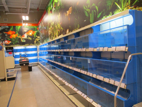 Full Aquarium Tank System  -  Does NOT Include Filtration System
