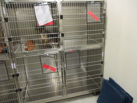 4 Cage Rolling Kennel