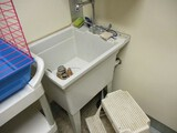 Poly Wash Sink with Faucet
