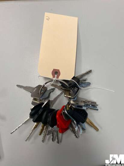 SET OF VARIOUS EQUIPMENT KEYS