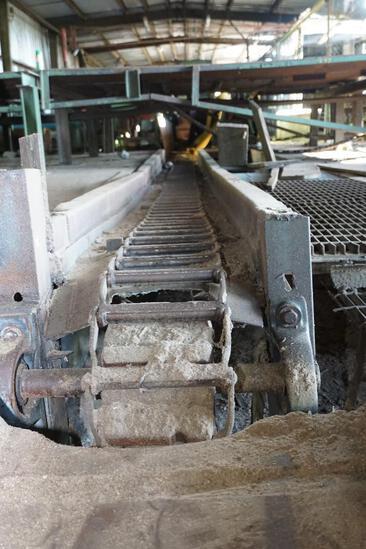 Main Dust box chain conveyor from head saw