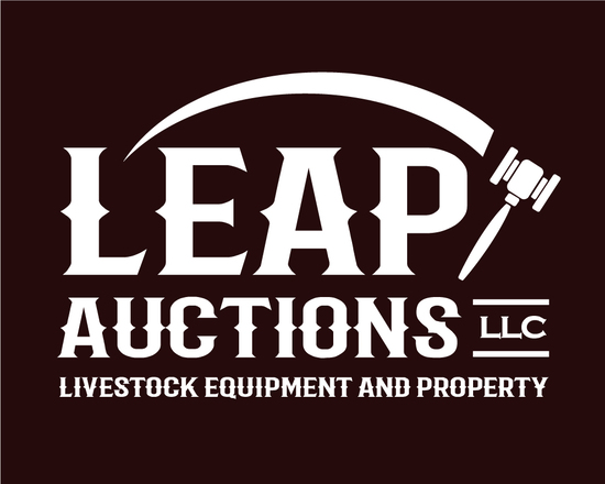 2020 Spring Business Liquidation Auction