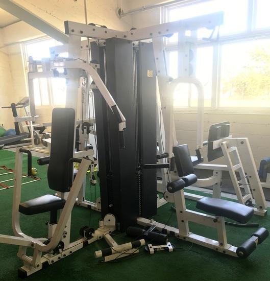 Multi Station Workout Exercise machine
