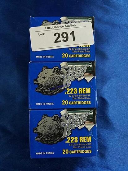 3X-20ct Silver Bear .223 62gr HP