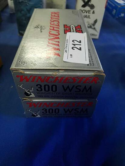 2X-20ct Winchester 300WSM 180gr PP
