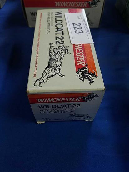 500ct Winchester Wildcat .22lr