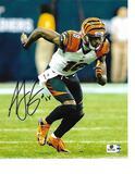 A.J. Green Cincinnati Bengals Autographed 8x10 Photo GA coa