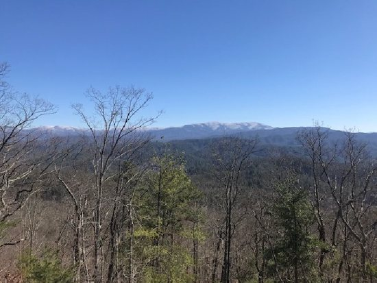 ABSOLUTE -Lot 1 - 5626 Abrams View Trail, Tallassee, TN, Overlook at Montva