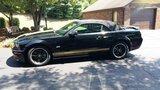 2007 Ford Mustang Shelby GT Hertz