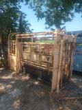 Foremost portable cattle working chute w/palpation cage