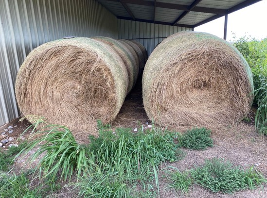 Round Bales Blue Stem