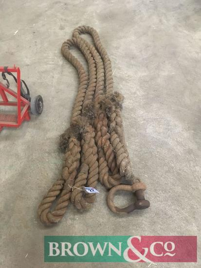 Tow rope and D ring
