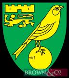 2 Premier League football tickets for Norwich City v Watford on 8th November 2019 at Carrow Road,