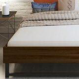 Signature Sleep Memoir 6 Inch Memory Foam Mattress with CertiPUR-US certified foam, Twin XL