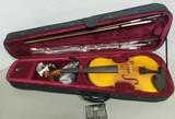 Like New Cecilio Violin G-String