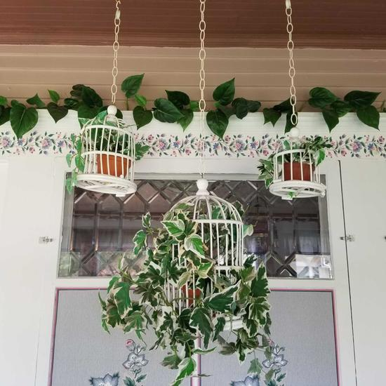 Decorative Hanging Plant Stands