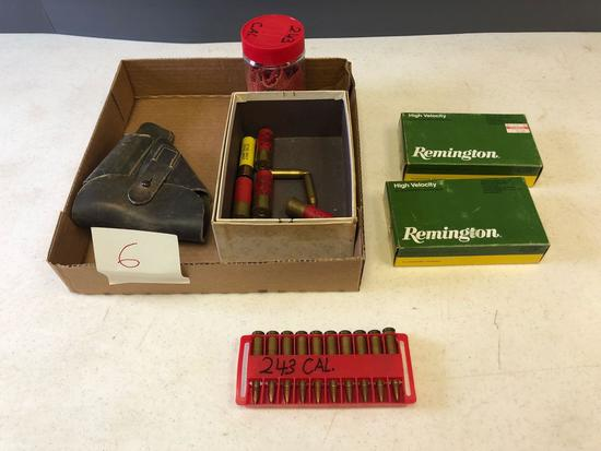 30-06, 20 ga. and 243 ammo and hand gun case.