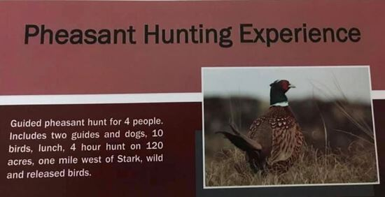 Pheasant Hunting Experience