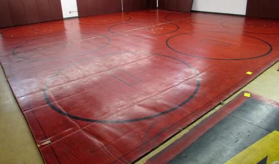 wrestling mat