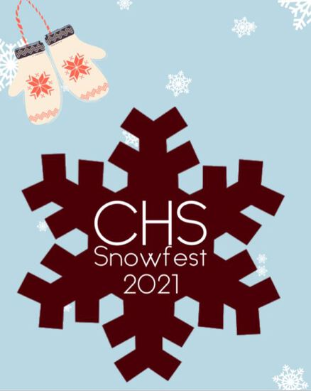 New Ulm Area Catholic Schools Snowfest Auction