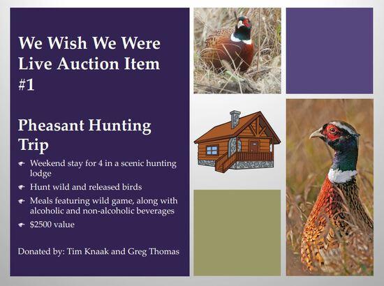 Pheasant Hunting Trip
