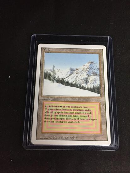 Magic the Gathering TAIGA Revised Dual Land Trading Card