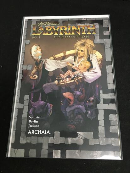 Labyrinth Coronation #1 Comic Book from Amazing Collection B