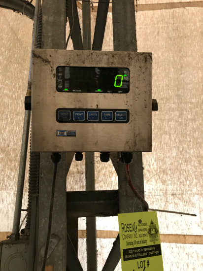 GSE 350 Scale readout along with 48 x 48 raised floor scale