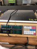 CAS SC 25P Counting Scale