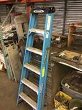 Werner 6 foot fiberglass ladder 250 pound cap.