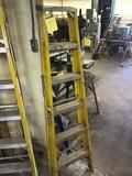 Davidson 6 foot stepladder