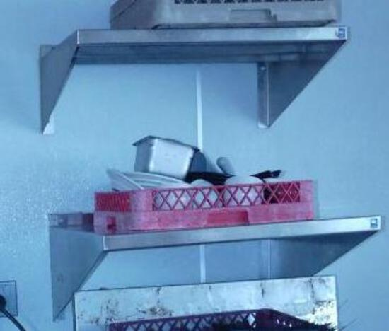 2 Stainless Steel Shelves - No Contents