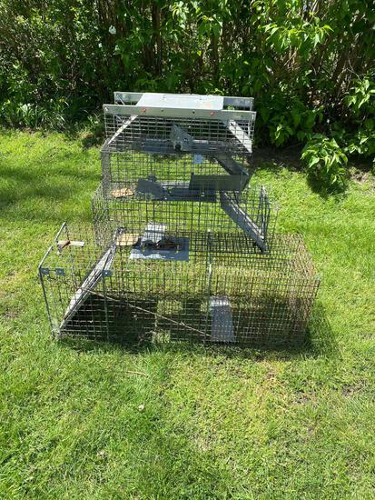 Critter Catcher Cage Traps (4)