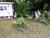 [Bid Lot #114] 908 Wright St, Sweetwater, TN (Lot Dimensions 80x100) Image 5