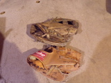2 Baseball Gloves RAWLINGS and EASTON