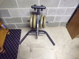 Weight Holder with Weights