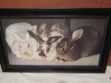 Signed Richard Murray Oil On Board, 23 x 13