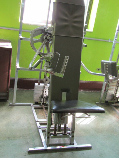 Seated Deltoid Lateral Raise Exercise Machine, Dynamics Health Equipment