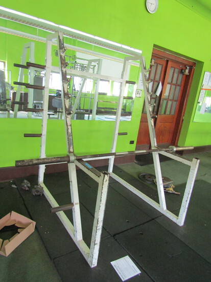 Angled Squat Rack with Plate Storage with Straight Bar