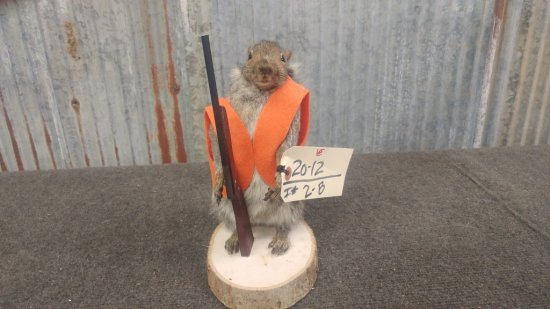 Full body mount hunting Squirrel new mount