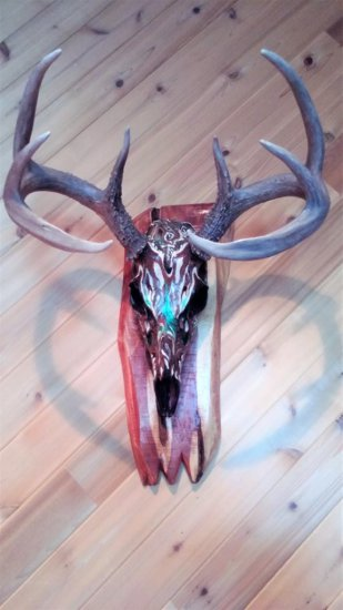 4x4 Hand Painted Whitetail Skull On Cedar Plaque