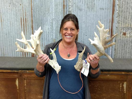 Thick Heavy 200 Class Whitetail Sheds
