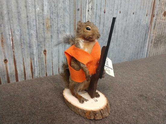 Full Body Mount Hunting Squirrel
