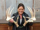 Big Heavy Whitetail Sheds