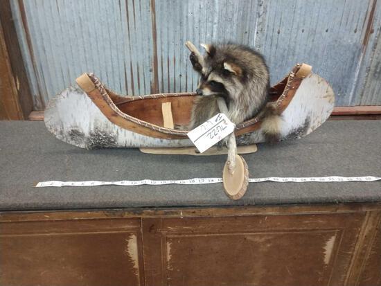 Full Body Mount Raccoon In A Birch Bark Canoe