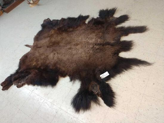 NICE Soft Tanned Buffalo Robe Taxidermy
