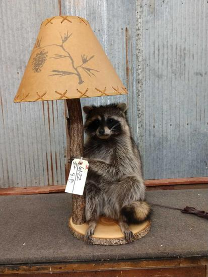 Raccoon End Table Lamp Taxidermy