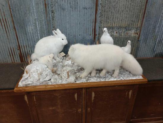 Arctic Fox , Ptarmigan , & Hare Taxidermy Mount