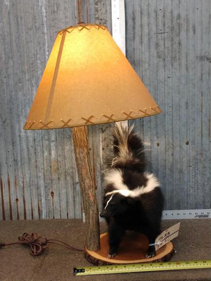 Skunk Lamp Taxidermy Mount