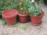 Lot - Large Molded Plastic Planters & Plants